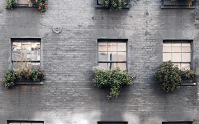 Vpliv Instagram-a na doživljanje naših domov